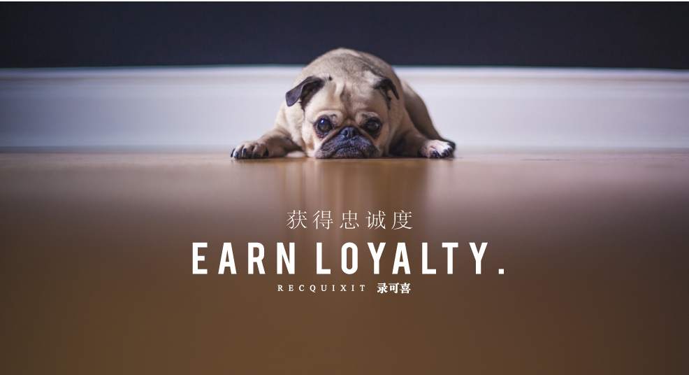 earn-loyalty-recquixit-filming-shanghai-video-production